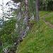 Bergweg Chluser Roggen