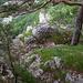 Bergweg Chluser Roggen gut versichert