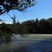 die [http://de.wikipedia.org/wiki/Rhone Rhone] bei La Plaine