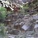 erste Steilstufe
