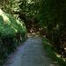 """La parte finale della salita, verso l'Alpe Pianella e l'Alpe Bonello, è designata come """"strada privata"""""""