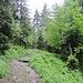 Aufstieg zum Biwakplatz