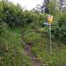 Nach nicht ganz 2 km zweigt der Bergwanderweg in Richtung Guora, Sadrein und Vilan von der alphaltierten Strasse ab und bringt einen hinaus in die Natur.