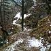hübsche Stege, gwundene Wege, Felspassagen - auch dies erfreut
