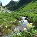 Schönes Wandergelände um die Alp Begligen.