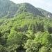 im waldreichen Val d'Iragna (Repiano)