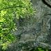 <br />ASGARD<br /><br /><br />Wohnort der Asinnen und Asen (Göttinnen und Götter)<br />_______________<br /><br />(Björk - Solstice)<br />[http://www.youtube.com/watch?v=7AqsQxh1lCw]<br />______________________________<br /><br />(Aasgard Pass)<br />[http://www.youtube.com/watch?v=wSCdb4A5HgE]<br />______________________<br /><br /><br />Bis jetzt 'kenne' ich (aus nächster Nähe) die Heidenhäuser<br />von Dongio, Malvaglia und Marolta im Valle di Blenio.<br /><br />Dazu kommen jene in der Leventina bei Chiggiogna - <br />die habe ich allerdings nur vom Talboden aus 'beobachtet'. <br />Hochgestiegen bin ich nicht.<br /><br /><br />Was mir dabei aufgefallen ist: <br /><br />Sie waren alle (ich rede von früher) relativ schwer zugänglich, <br />andererseits aber nicht weit von der nächsten Siedlung entfernt.<br /><br />Ein Felsvorsprung oder eine Felsenrampe wurden als Fundament benutzt.<br /><br />Über den Häusern ist der Felsen überhängend,<br />so dass er ein schützendes Dach über den Häusern bildet.<br /><br />Das Fundament, also der Felsvorsprung oder die Rampe,<br />bilden zusammen mit dem überhängenden Felsen eine Felsnische,<br />an deren Wand im Hintergrund die Heidenhäuser gebaut (oder 'geklebt') wurden.<br /><br />Bei den Heidenhäusern in Dongio und Chiggiogna gibt es <br />etwas abseits der Häuser je eine Schutzmauer,<br />Beim Heidenhaus in Malvaglia (siehe Foto, oben) <br />ist die Schutzmauer identisch mit einer der Seitenmauern (rechts im Bild, oben).<br /><br /><br />Zusammengefasst:<br /><br />Die Heidenhäuser wurden in Felsnischen hinein gebaut.<br />Die Felsnischen können sehr gross sein, wie in Malvaglia,<br />oder sehr klein, wie zum Beispiel in Marolta <br />(der Grösse der Häuser entsprechend). <br /><br />________________________________________________________<br />_____________________________________<br />