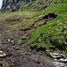 unterhalb Chemmi waren sowohl Auf- wie Abstieg stellenweise ziemlich feucht und rutschig (Katoolahs gaben etwas mehr und willkommenen Halt)