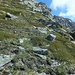 In der Flanke des Monte Prosa-Südgrats unterhalb Punkt 2589.