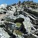 Block-Abstieg über den Nordgrat des Schwarzlochhorn in die Sunnig Lücke.