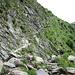 sentiero con gradini in pietra