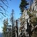 Felswand am Alpinen Pfad