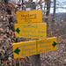 Im Wald über Olten werden die Wegweiser noch von Hand geschrieben