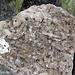 Dekorativer könnte der Gipfelsteinmann des Bächenstocks wohl kaum bestückt sein!