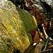 <br />...und auch vor der kleinen Höhle, in der sich der Gral befand, wurde es immer heller....<br /><br />______________________________<br /><br />➡➨➠➡➨➤➣☞☞☛☛☞☞☞☞➽➽➼➼➼➺➺➻➻➸➸➸➸➫➫☞☞☛☛➠➡➨➟➟➞➝<br />_____________<br /><br />(Mutual Core - Björk)<br />[http://www.youtube.com/watch?v=ZM80F_J-QHE]<br />_______<br />____<br />_<br /><br /><br /><br /><br />________<br />__<br /><br /><br />________<br />_____________<br /><br /><br />___<br />_
