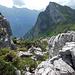 Am Schluss noch durch Alpenrosen- und Schrofengewusel. Der Mättlistock schaut zu.