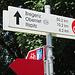 in Feldkirch trifft der Illradweg auf die Liechtensteiner Rheintalroute