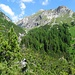 Der wildromantische Aufstieg zur Steileralp.