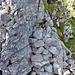 Steinhaufen in dem sich dass Gipfelbuch befindet.