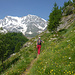 Si cammina su bel sentiero immersi in uno scenario indimenticabile