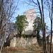 Ruine Alt Bodman II