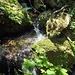 An den Edelfrauengrab-Wasserfällen