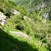 Desktop\HIKR.Vergeletto-Cevio Teil I\Der Weg ist da wo man geht - der alte Alpweg auf Albezzona ist bei hoher Vegetation nicht immer leicht auszumachen
