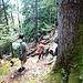 Auf dem Weg zurück durch den steilen Wald