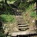 immer wieder Treppen