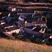 Burgos - Hontanas, 28. Juli: die Ortschaft Hontanas kurz vor Sonnenuntergang von der umgebenden Hochebene aus gesehen.