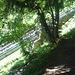 Die berühmte Treppe entlang der Gleise
