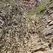 Kletterstelle mit Seil und Kette gesichert von unten...
