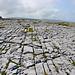 Karstlandschaft Burren im Westen Irlands.