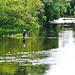 Hier wird fleißig mit Fliege gefischt.