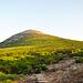 Erst einmal querfeldein einen Weg mit wenig Morast suchen und dann bis zum felsigen Gipfelaufbau.