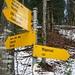 """Abzeigung bei der """"Lättenweid"""" wo der steile Wanderweg beginnt."""