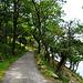 An Ostufer des Sees führt ein schattiger Weg entlang.