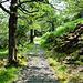 Der Weg führt bergauf und schwenkt demnächst nach rechts...