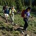 s'Wandergrüppli auf dem Chapin Pass Trail