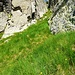 Das einfachste Grasband auf die Bocchetta die Categn
