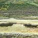 Einer der vielen kleinen Moorseen