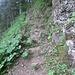 Drahtseile helfen über steile Passagen hinweg