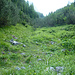 Ein guter Pfad führt ins Val Triazza