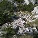Die steileren Passagen sind durchgehend mit Drahtseilen abgesichert