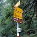 Abzweigung auf der Alp Mulix