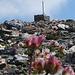 Weniger hübsch: Der hässliche Gipfelsteinmann des Bündner Vorab