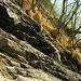 """<br />⬆⬆⬆ Da habe ich ebenfalls nach einem anderen Zugang zu den Häusern gesucht.<br /><br /><br />Ebenfalls vom Wanderweg """"Dongio ➞ Stabbio"""" abzweigend,<br />den Berghang oberhalb von Crespögn querend, habe aber....  ➨➨➨➤➢➣➡➠➜➔➟➙➞☞☛➙➛➝<br />_____________<br />__<br /><br /><br /><br />"""