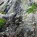 Das Quellwasser sprudelt direkt aus dem Fels-Wasserhahn