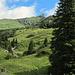 Alp Ramin