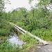 Unterwegs zwischen Nikkaluokta und der Kebnekaise fjällstation - Immer wieder führt der Weg zwischendurch über Holzbohlenstege, um sumpfige/moorige Stellen oder auch auch kleine Wasserläufe zu überbrücken.